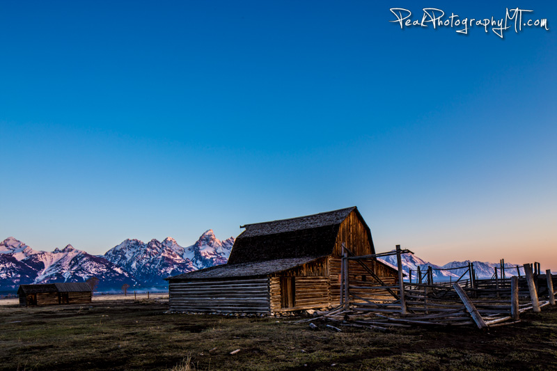 First light hitting the Grand Tetons behind Mormon Row Barn (click the image to purchase a print!)