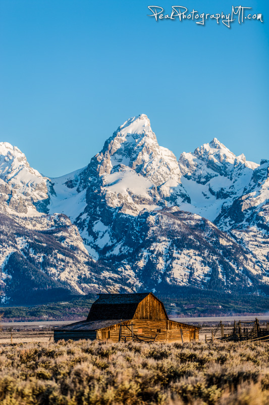 The Grand Teton -the highest  peak in Grand Teton National Park (Click the image to buy a print!)